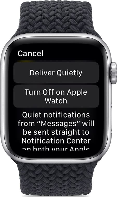 How to Get, Turn off and Clear Notifications on Apple Watch